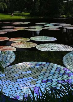 The amazing Waterlilies in Bloom by artist Bruce Munro 65,000 CDs were made into giant water lilies floating on the lake.  How beautiful it must have looked when the sun shined on the shimmering and colorful CDs
