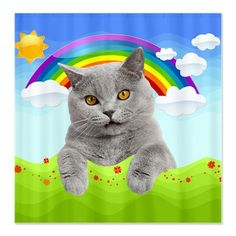 This is a kitty. With a rainbow. Because everyone needs a shower curtain with a kitty and a rainbow. (yes, this is a shower curtain)