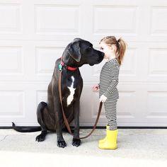Big Dogs vs. Little Kids #DogTumblr