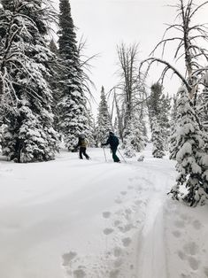 See more of ellelmann's VSCO. Ski And Snowboard, Snowboarding, Ski Season, Cross Country Skiing, Time Of The Year, Friend Photos, Narnia, Winter Time, Vacation Destinations