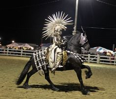 Might need a Friesian to pull this one off. More horse Halloween costumes.