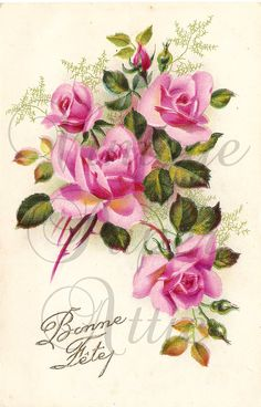 Pink Roses Antique Vintage French Postcard Chromo Post Card from Vintage Paper Attic