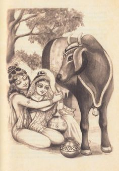 Radha - Krishna cow