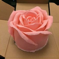Big rose cake – recipe & video This cake is so cute & creative! It ca… Big rose cake – recipe & video This cake is so cute & creative! It can be a gift in Valentine's Day! Gorgeous Cakes, Pretty Cakes, Amazing Cakes, 3d Cakes, Mini Cakes, Cupcake Cakes, Just Cakes, Specialty Cakes, Occasion Cakes