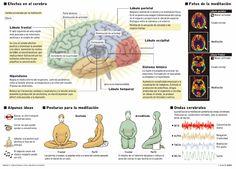 La meditación puede provocar cambios considerables en las estructuras del cerebro. No lo dice un grupo «new age», ni unos amantes de la pseudociencia o de la falsa espiritualidad, sino un equipo de psiquiatras liderado por el Hospital General de Massachusetts, que ha realizado el primer estudio que documenta cómo ejercitar la meditación puede afectar ...