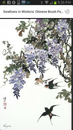 Japanese style wisteria with swallows.