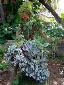 Succulent Garden Wire Art   Yahoo Image Search Results