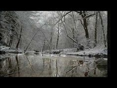 The Raveonettes - The Christmas Song HQ/HD +lyrics