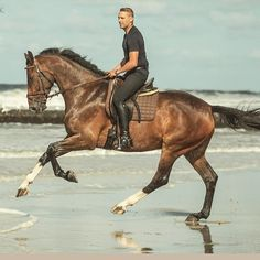 Cruising on the beach  ! ! ! #beach#cruising#horse#rider#nature#ocean#sea#stunning#power#canter#pferd#cheval#cavallo#caballo#pferdesport#reitsport#paardensport#equestrianlife#equestrian#dressur#ruiter#lifestyle#passion#sport#athlete#wow#rytter#animal#hest via ✨ @padgram ✨(http://dl.padgram.com)