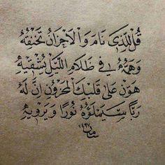 اقوال عن الحياة وحكمة بالصور Wisdom Quotes Proverbs Quotes Quran Quotes