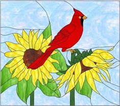 Stained Glass Patterns Free, Stained Glass Birds, Glass Panels, Rooster, Free Pattern, Mosaic, Flowers, Animals, Painting