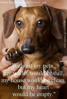 Without My Pets