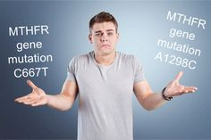 Do you have a C677T & or a A1298C mthfr gene mutation? Learn the difference between the genes and how you can treat each gene the right way