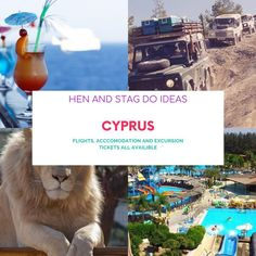 @scentsandsinners posted to Instagram: I can arrange Flights and Accommodation and the following excursions. . 📌Famagusta 📌Nicosia Day Tour 📌4 x 4 Adventure Akamas 📌Paphos Zoo 📌Cyprus through the ages 📌Aphoridite Waterpark 📌Blue Lagoon sea star cruise 📌Troodos Hidden charms . For more information DM me... . #cyprus #henparty #henpartyinspiration #henpartyideas #bride2be #gettingmarried #engaged #shesaidyes #bridetobe #weddingplannin Paphos, Blue Lagoon, Day Tours, Cyprus, Getting Married, Brides, Cruise, Sea, Adventure