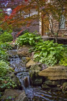 Aquascape Stream and Waterfall that runs by the front door. Great way to add curb appeal!