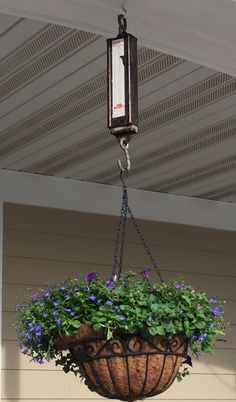 Hanging scale my porch