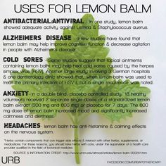 Natural Remedies For Headache Lemon Balm uses. Great, growing some in the garden now! - Uses Lemon Balm - Melissa Officinalis : as member of the mint family, Lemon Balm is considered to be a calming medicinal herb that has been used as far . Healing Herbs, Medicinal Plants, Natural Healing, Holistic Healing, Herbal Plants, Holistic Wellness, Holistic Approach, Natural Health Remedies, Herbal Remedies