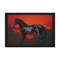 Horse at sunset canvas