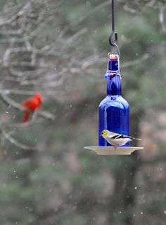 the garden-roof coop: DIY Wine Bottle Bird-Feeders - still not sure if bird-feeders are a good idea when i want cats.. but whatever : )