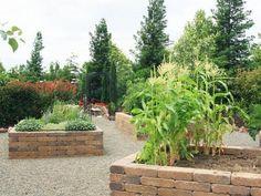 raised vegetable garden stone beds gravel paths home gardening ideas pergola