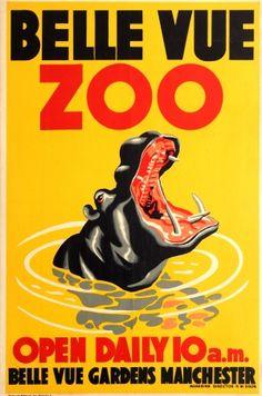 Belle Vue Zoo Manchester Hippo 1950s - original vintage poster listed on AntikBar.co.uk