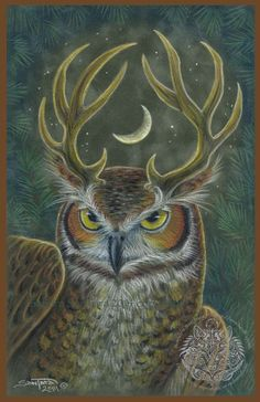 The Stag Owl Art by Sandra SanTara Original colored pencil on suede board 7 x 11    Original is available: windwolf.com/WWOriginals.htm Print are available here: windwolf.com/WWPrinttotemSham.htm