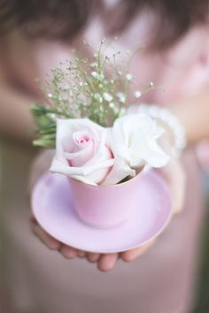 Tea cup roses x