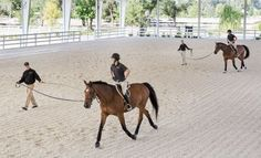 Going Round and Round - Improve Your Riding with Longe Lessons | Expert how-to for English Riders