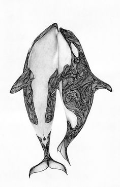 Orcas Ink and pencil Author: Max Rajado Orca Tattoo, Whale Tattoos, Killer Whale Tattoo, Ocean Sleeve Tattoos, Tattoo Studio, Orcas, Posca Art, Drawn Art, Arte Sketchbook