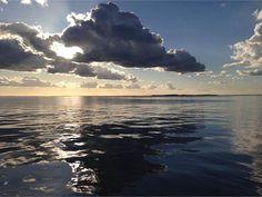 En fisketur vest for Mårup Havn på Samsø kastede ikke fisk af sig, men til gengæld var der marsvin i det blikstille vand. En smuk eftermiddag. (Foto: Jeppe Børsting © Brugerbillede)