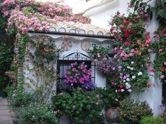 Patios andaluces Spain