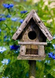 http://www.natureskills.com/birds/how-to-build-a-bird-house/