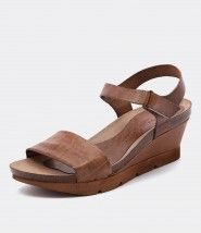 Sabella Inca Brown