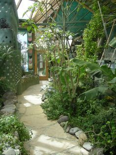 vegetable garden in solarium of earthship - Google Search