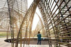 Forest Pavilion // nArchitects
