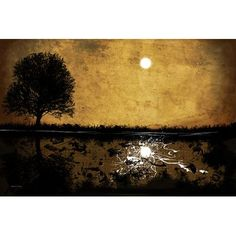 """Maxwell Dickson 'Moonlight' Abstract Graphic Art on Wrapped Canvas Size: 16"""" H x 20"""" W x 1.5"""" D"""