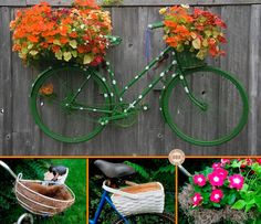 Got an old bicycle that's seen better days? Why not turn it into a garden decoration/planter! View the full album of this project at http://theownerbuildernetwork.co/easy-diy-projects/diy-bicycle-planter/ We'll be looking out for old bicycles, how about you?