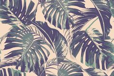 Tropical jungle leaves pattern  @creativework247