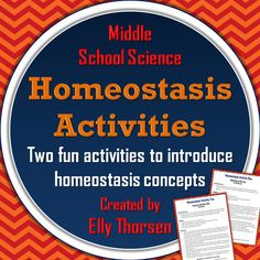 Two fun activities for middle school science students to learn about homeostasis. The activities allow students to move around which students love! 7th Grade Science, Science Student, Middle School Science, Science Classroom, Teaching Science, Science Activities, Science Ideas, School Fun, School Stuff