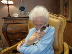 True tenderness therapy, pet therapy helps make joy to sick people with animals | SooCurious