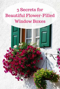 When it comes to filling pots or window boxes with flowers, there are a few easy must-have secrets. Beautiful flower-filled window boxes do not happen by accident. Once you know these 3 secrets, you'll create beautiful window boxes or pots brimming with g