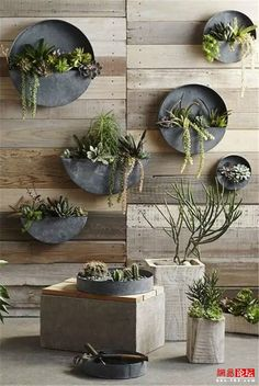 Roost Orbea Zinc Circle & Half-Circle Wall Planters Roost Orbea Zinc Circle Planters are made from galvanized iron with an aged zinc finish. Perfect for succulents and small plants, these full and half-circle wall planters are both rustic and original. Zinc Planters, Outdoor Planters, Outdoor Gardens, Indoor Outdoor, Hanging Planters, Planter Pots, Outdoor Ideas, Rustic Planters, Planter Ideas