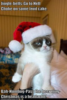 Grumpy Cat Christmas humor