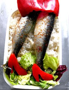 sardine bento(u) - the devil wears pirikara: lunch box with a bed of steamed rice, salad, and grilled sardines seasoned with soy sauce and hot peppers. Bento Recipes, Cooking Recipes, Bento Ideas, Cute Food, Good Food, Funny Food, Awesome Food, Tortas Low Carb, Creative Food Art