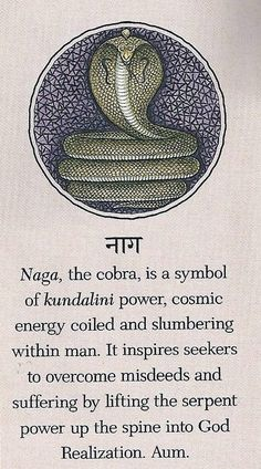 Naga, the cobra, is a symbol of kundalini power, cosmic energy coiled and slumbering within man. It inspires seekers to overcome misdeeds and suffering by lifting the serpent power up the spine into God Realization. Aum.
