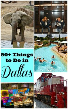 50+ Things to Do in Dallas