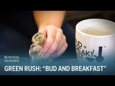 "Business Insider: Green Rush: ""Mile High Bud and Breakfast"""