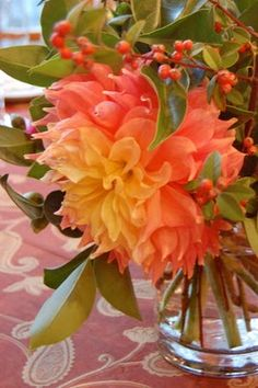 Dahlias. This color pallete would be nice. Coral.Orange.Green. @Studio Calico @Melissa Priest