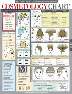 Cosmetology Chart & Cheat Sheet For Hair Stylists, Students & Educators Laminated Spill-Proof & Tear-Proof x 11 Six Pages-Includes Information On Hair Cutting, Hair Color & Hair Cutting Techniques, Hair Color Techniques, Cosmetology Student, Cosmetology State Board, Hair Skin Nails, Tips & Tricks, Cut And Color, Hair Hacks, Hair Tips