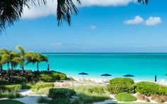 Turks and Caicos Islands - An exotic unspoiled paradise in #Caribbean with miles of pristine beaches, exotic natural coral barrier reef, snorkeling and scuba diving.. http://www.wanderplanet.com/turks-caicos-islands-travel-hotel-resorts-vacation/